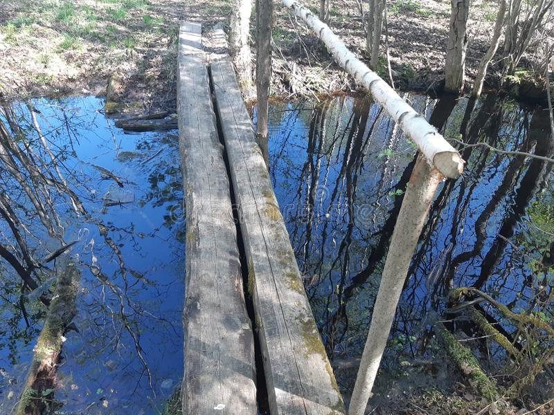 stark bro över The Creek royaltyfri fotografi