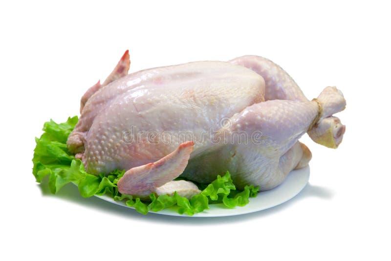 stark całego kurczaka zdjęcia stock