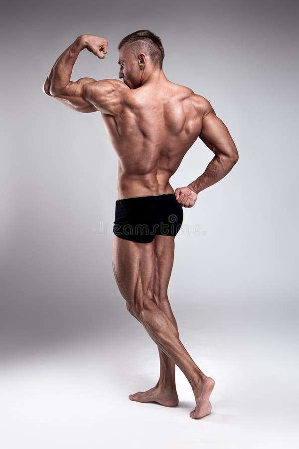 Stark idrotts- mankonditionmodell som poserar tillbaka muskler royaltyfri bild