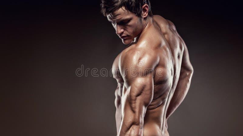 Stark idrotts- mankonditionmodell som poserar tillbaka muskler och tricep royaltyfria foton