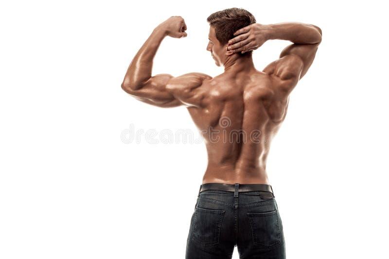 Stark idrotts- mankonditionmodell som poserar tillbaka muskler, triceps över vit bakgrund kopiera avstånd royaltyfri fotografi