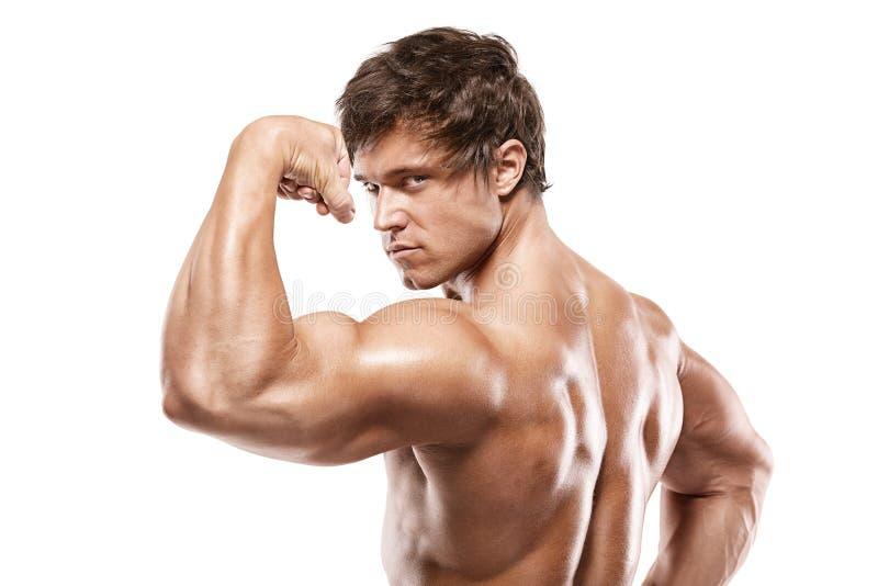 Stark idrotts- mankonditionmodell som poserar tillbaka muskler, triceps, royaltyfria bilder