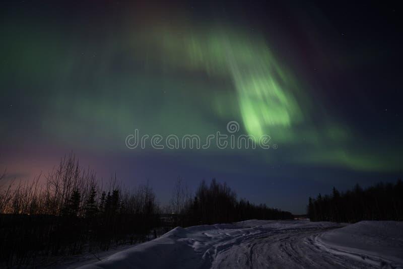 Stark multicolor skärm av nordliga lampor arkivfoto