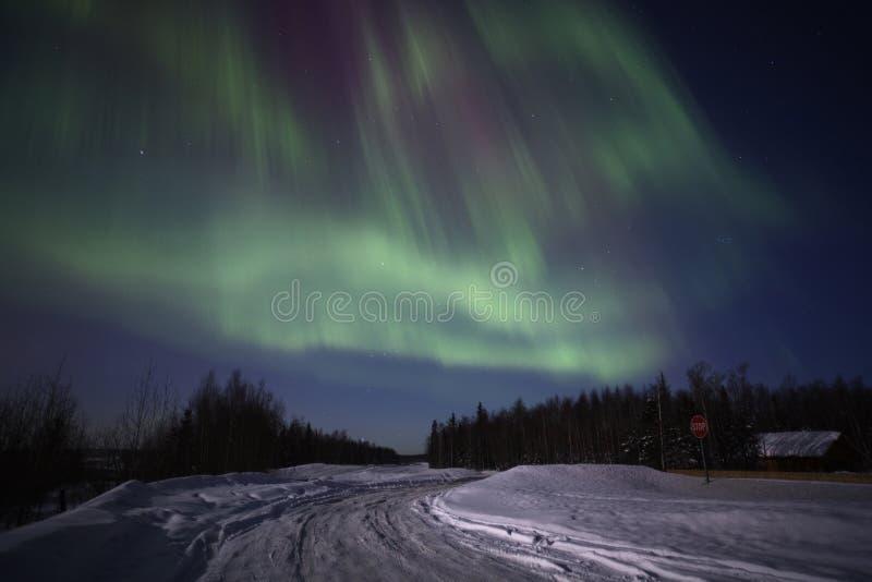 Stark multicolor skärm av nordliga lampor royaltyfri fotografi