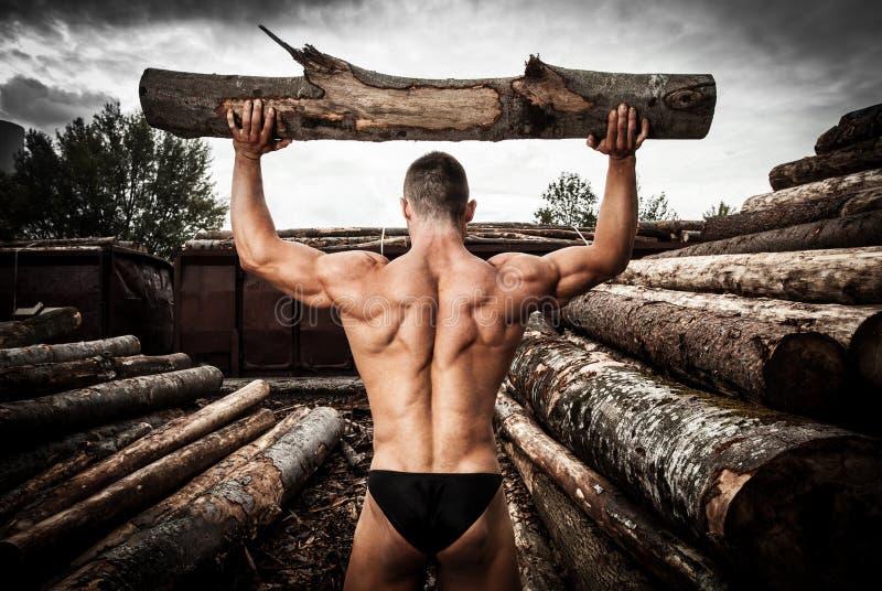 Stark muskulös man med wood stammar arkivbilder