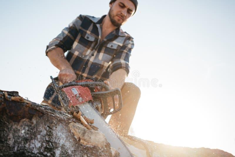 Stark skäggig skogsarbetare som sågar ett träd med chainsawen arkivbild