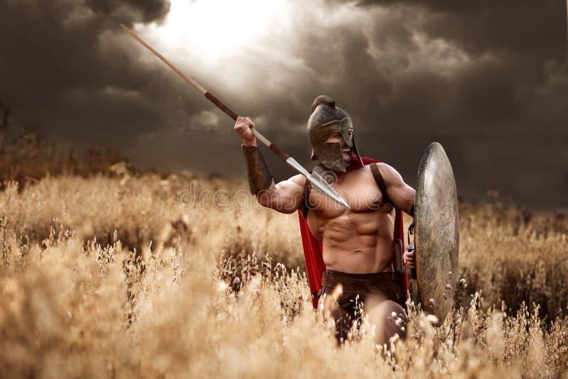 Stark spartansk krigare i stridklänning med en sköld och ett spjut royaltyfri foto