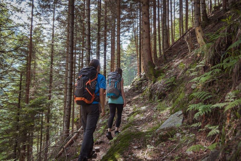 Starka par som fotvandrar i bergen fotografering för bildbyråer