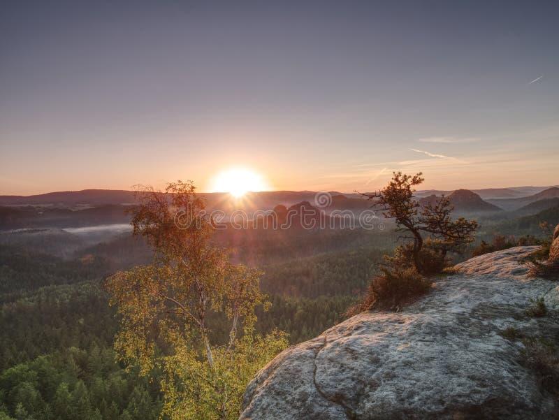 Starka solstrålar gör långa remsor i härligt landskap för mist arkivbilder