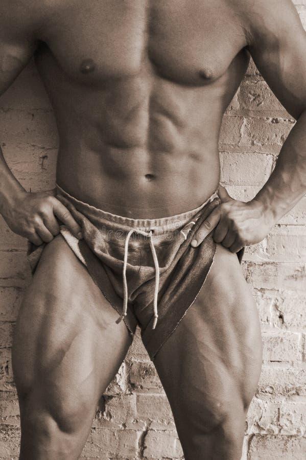 Starke männliche Fahrwerkbeine stockfoto
