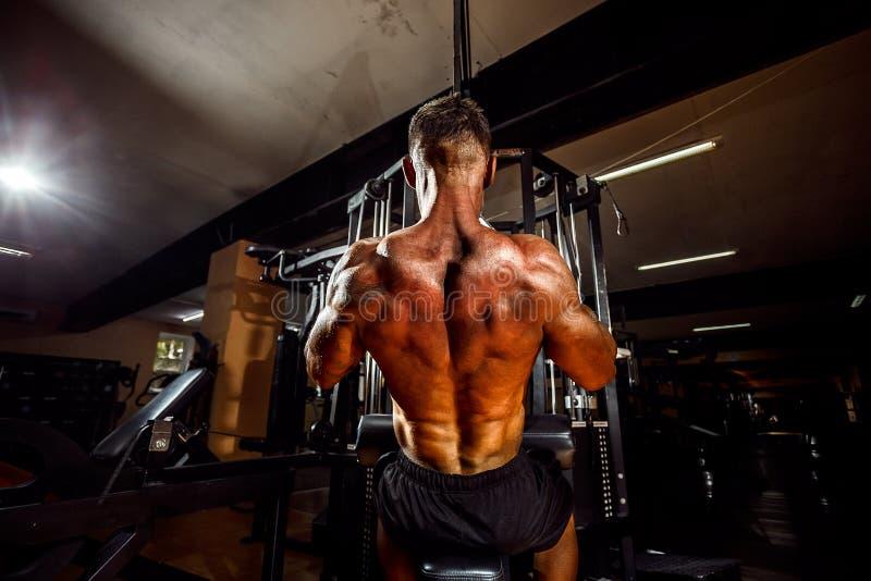 Starker Bodybuilder, der Schwergewichts- Übung für Rückseite tut stockfoto