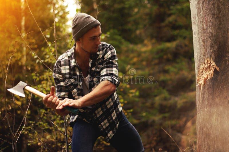 Starker Holzfäller, der Holz im Wald hackt lizenzfreies stockfoto