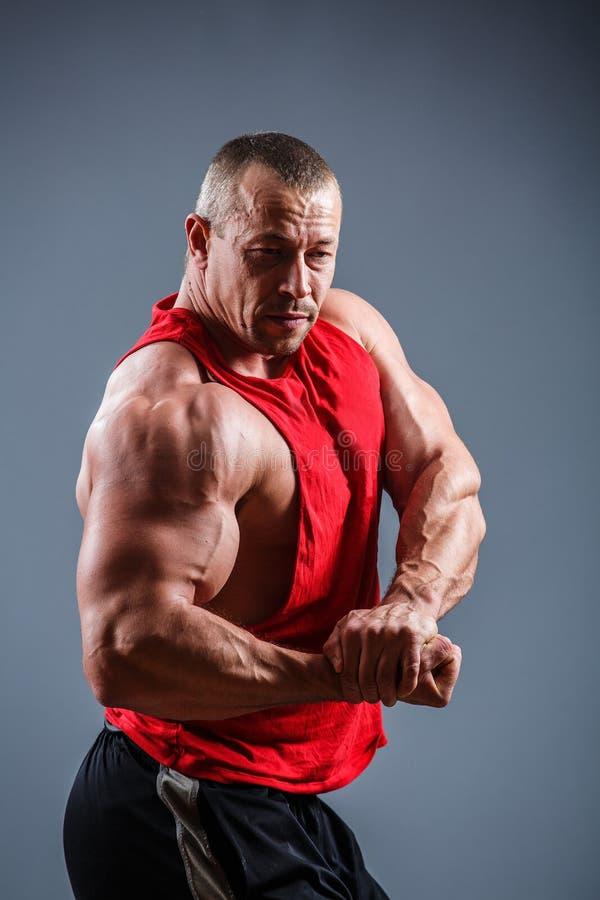 Starker Mann mit perfekter ABS, Schultern, Bizeps, Trizeps und Kasten Bodybuilder schulterfrei lizenzfreies stockbild