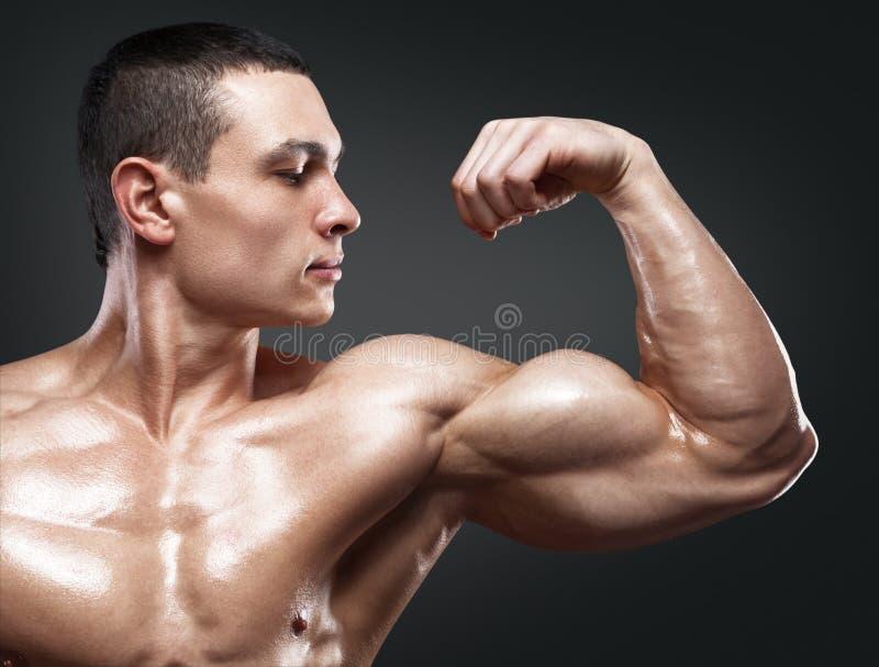 Starker und hübscher junger Bodybuilder demonstrieren seine Muskeln lizenzfreies stockbild