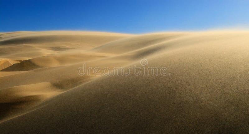 Starker Wind in der Wüste stockfoto