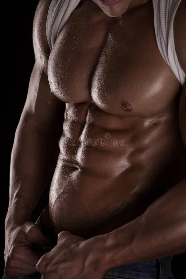 Starkes athletisches Mann-Eignungs-Modell Torso, das sechs Satz-ABS zeigt. stockfotografie