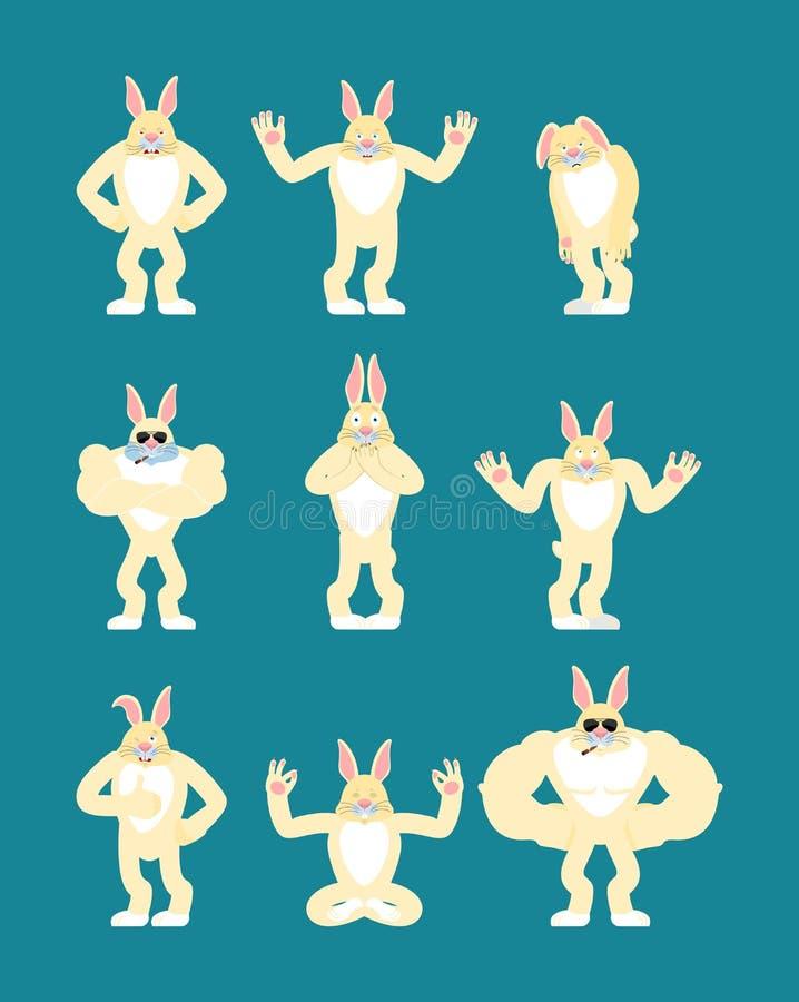 Starkes kühles ernstes des Kaninchens Rauchendes emoji Zigarre der Hasen Tierstr lizenzfreie abbildung