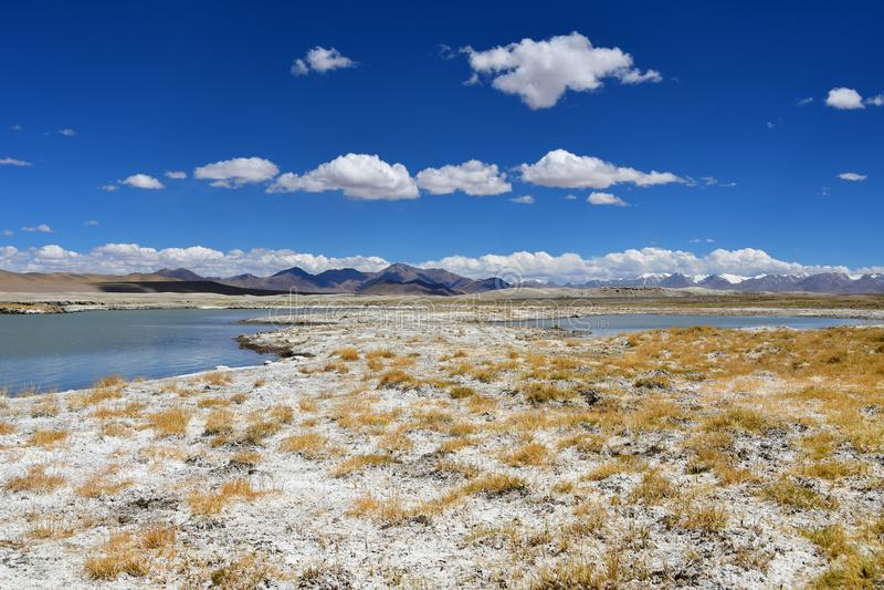 Starkt salthaltig sj?Ruldan Nak i Tibet, Kina royaltyfria foton