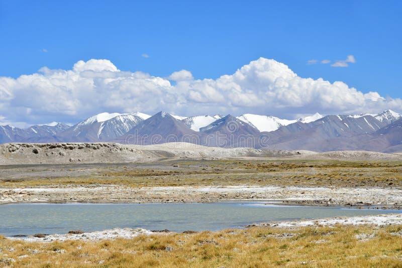 Starkt salthaltig sj?Ruldan Nak i Tibet, Kina fotografering för bildbyråer