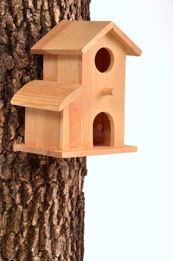 Starling-casa cómoda en un tronco de árbol fotos de archivo