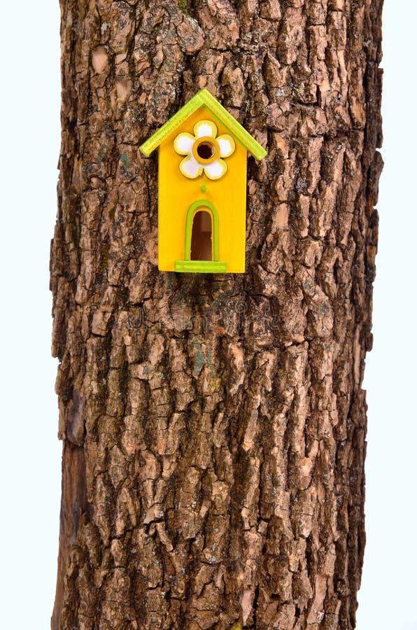 Starling-casa divertida en un vástago aislado foto de archivo libre de regalías