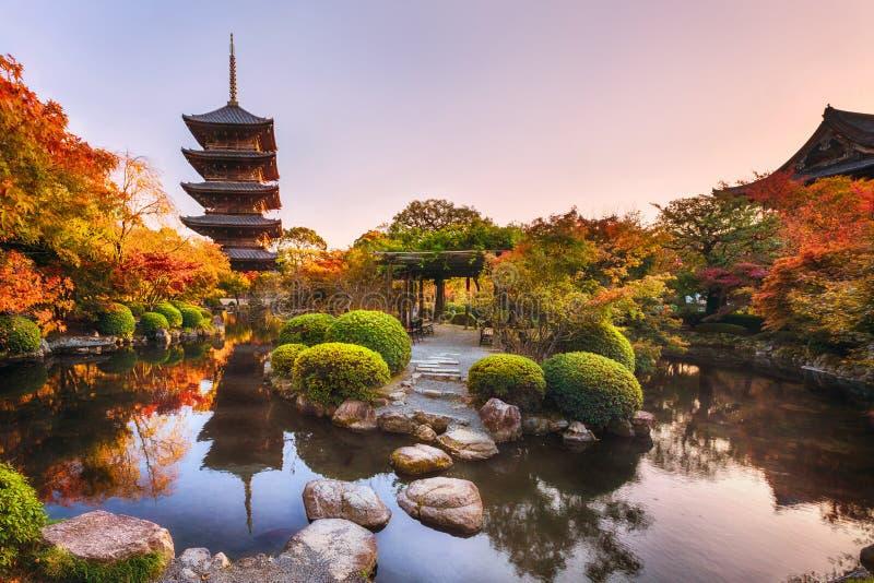 Starożytna drewniana pagoda Toji świątynia w jesiennym ogrodzie, Kioto, Japonia zdjęcie royalty free