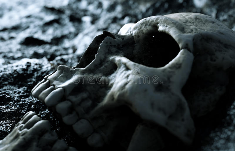 starożytna ludzkiej czaszki Apokalipsy pojęcie świadczenia 3 d ilustracja wektor