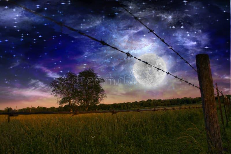 Starry Night stock illustration