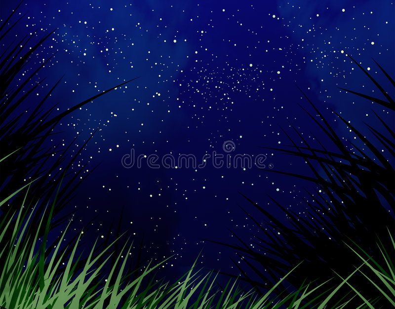 Download Starry Night Stock Images - Image: 6596174