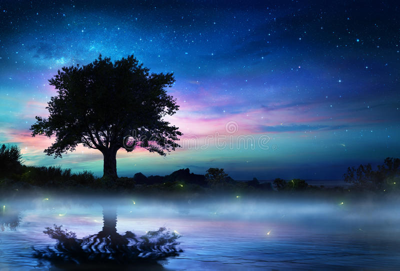 Starry Night With Lonely Tree stock image