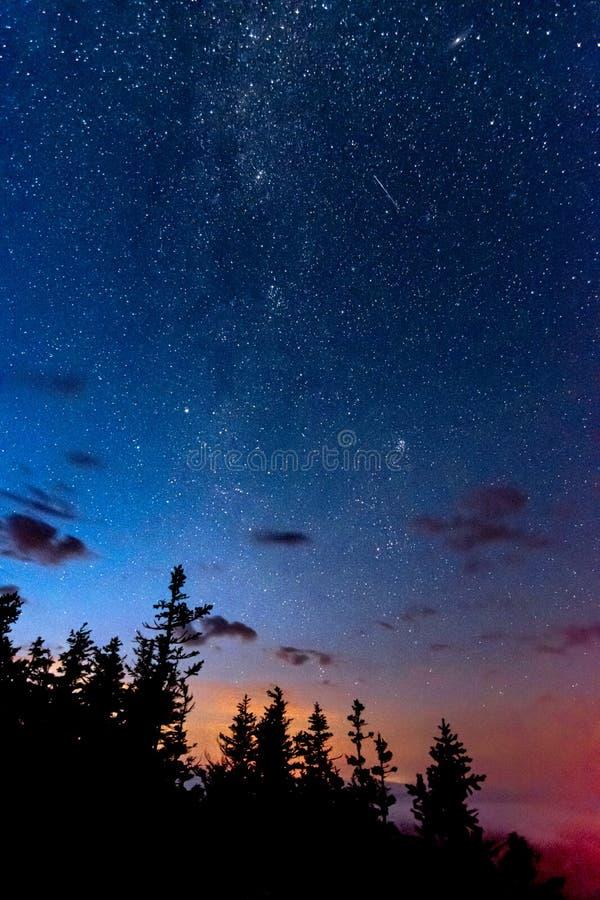 Starry night med Milky Way och Perseid meteor och Andromeda i himlen ovanför skogsträden fotografering för bildbyråer