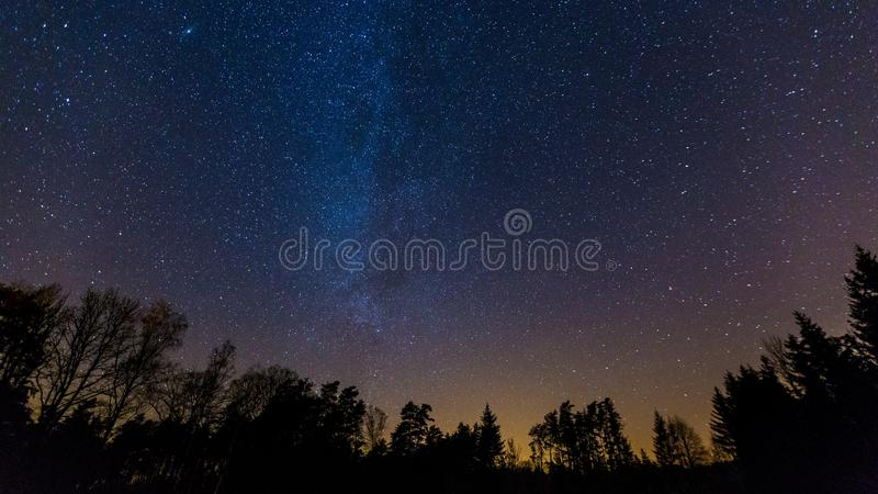 Starry night sky with Milky way over forest stock images