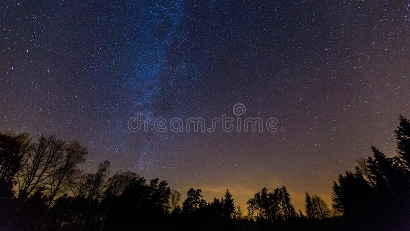 Starry night sky with Milky way over forest royalty free stock photo