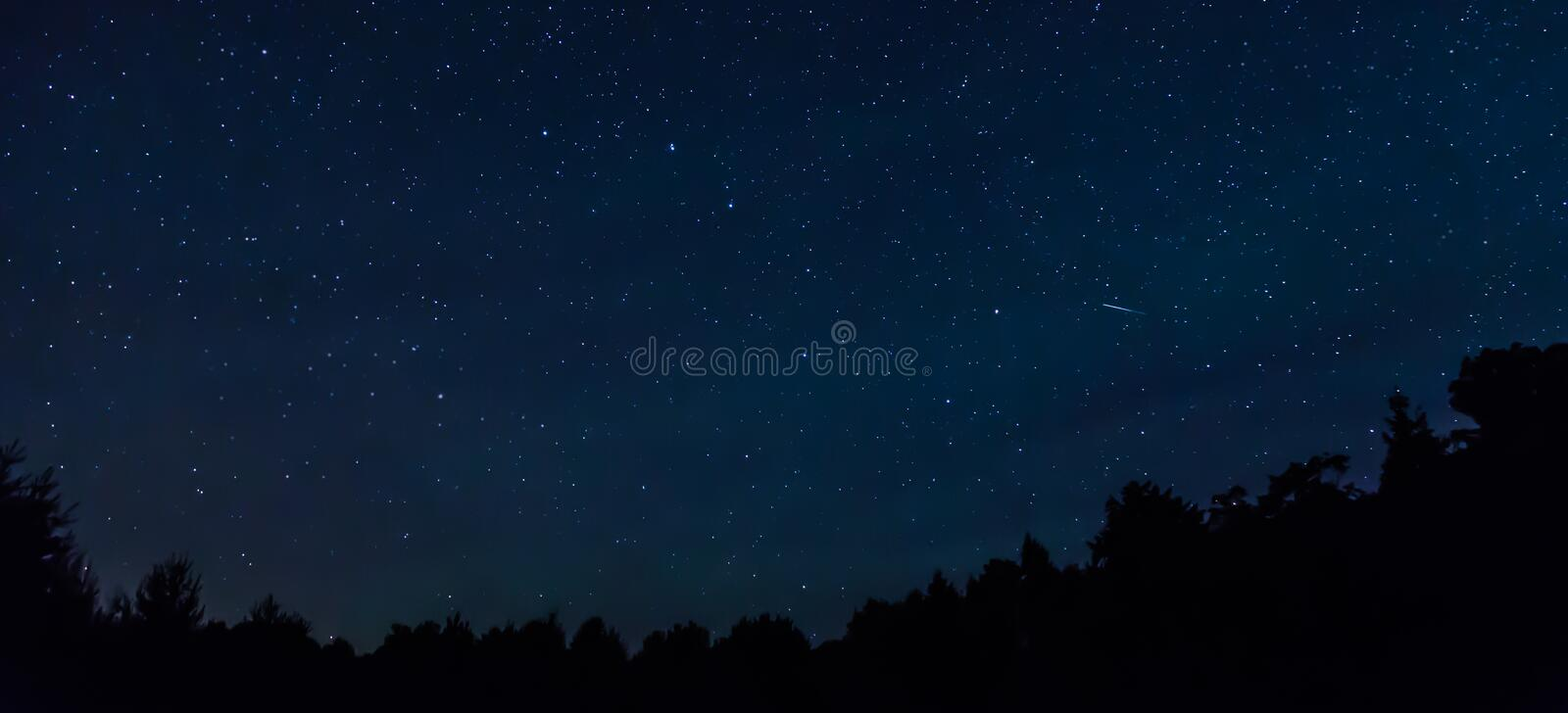 Starry night sky with a shooting star and a treeline in the foreground. stock photos