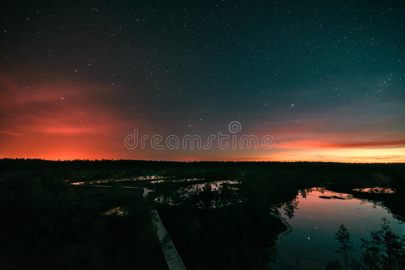 Starry night at a swamp royalty free stock photo