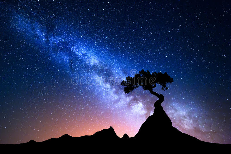 Starry sky with blue Milky Way. Night landscape royalty free stock photography