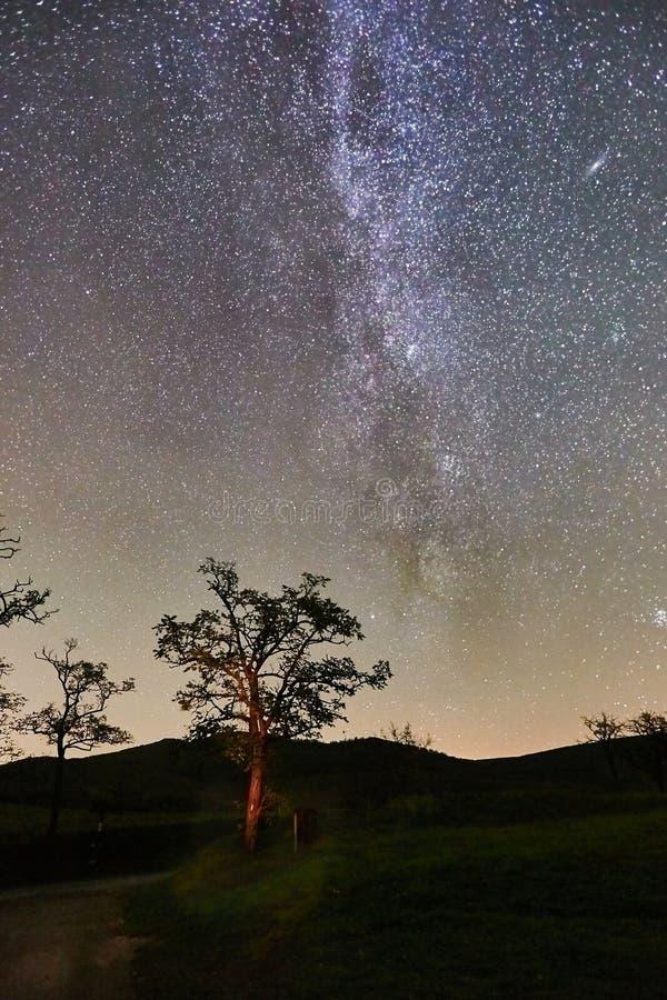 Starry sky landscape stock image