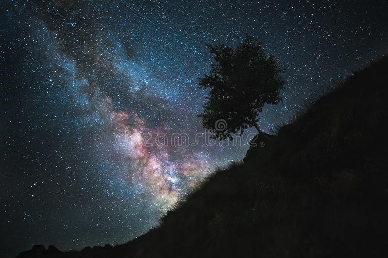 The starry sky is a milky way and a mountain slope with a tree. Night landscape stock image