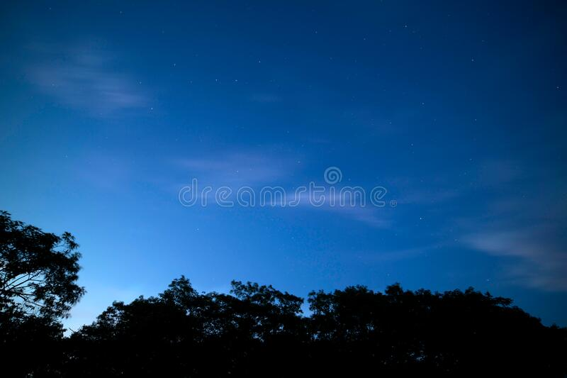 Starry sky at night over forest stock images