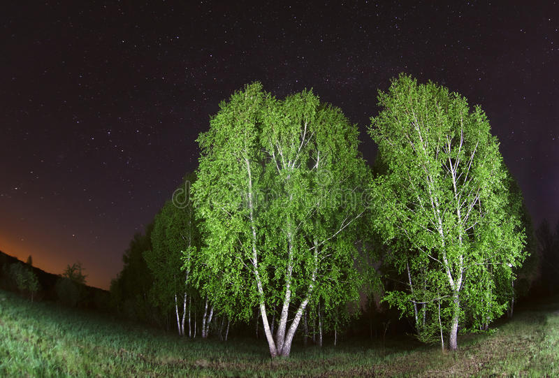 Starry sky, night photography, astrophotography royalty free stock photos