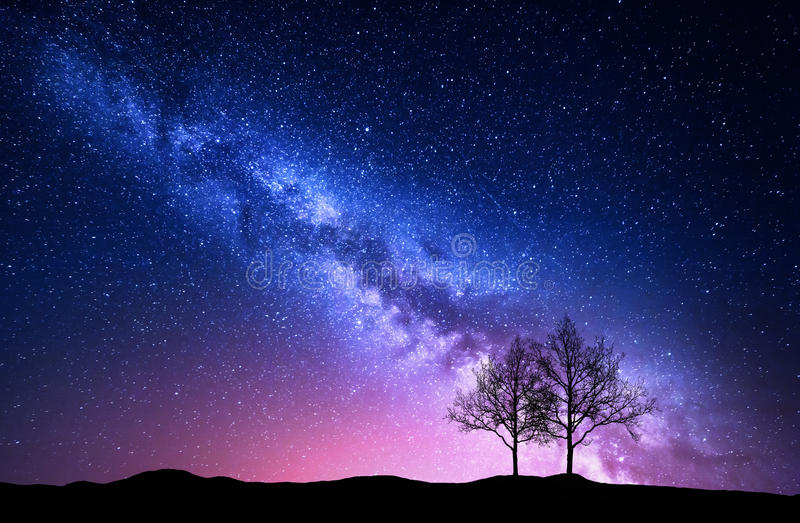 Starry sky with pink Milky Way and trees. Night landscape royalty free stock photos