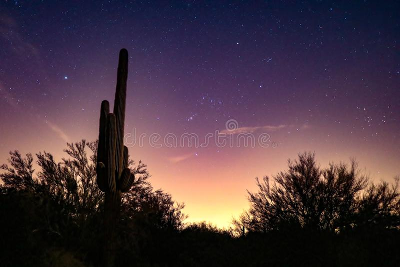 Starry Sky Before the Sunrise. Sunrise picture of the sky full of stars with the silhouette of a desert as a foreground royalty free stock photo