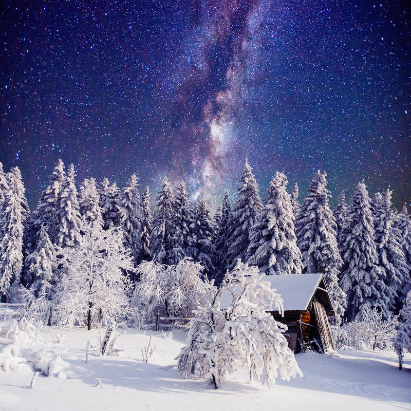 Starry sky and a tree in frost at the beautiful house in the woods in midwinter. Starry sky and a tree in frost at the beautiful house in the woods in midwinter royalty free stock image