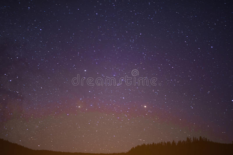 Starry summer night sky stock photography