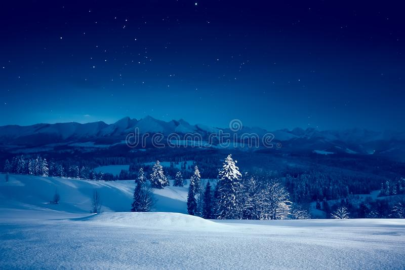 Starry winter night royalty free stock image