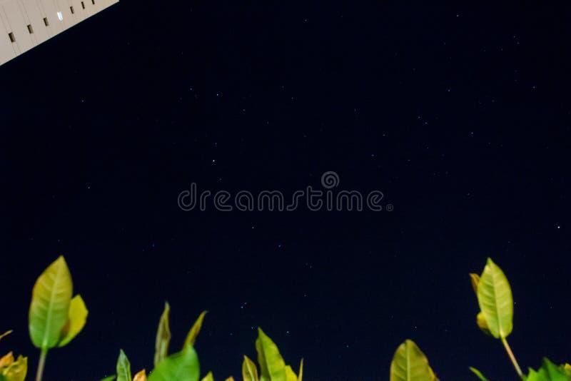 Stars night stock images