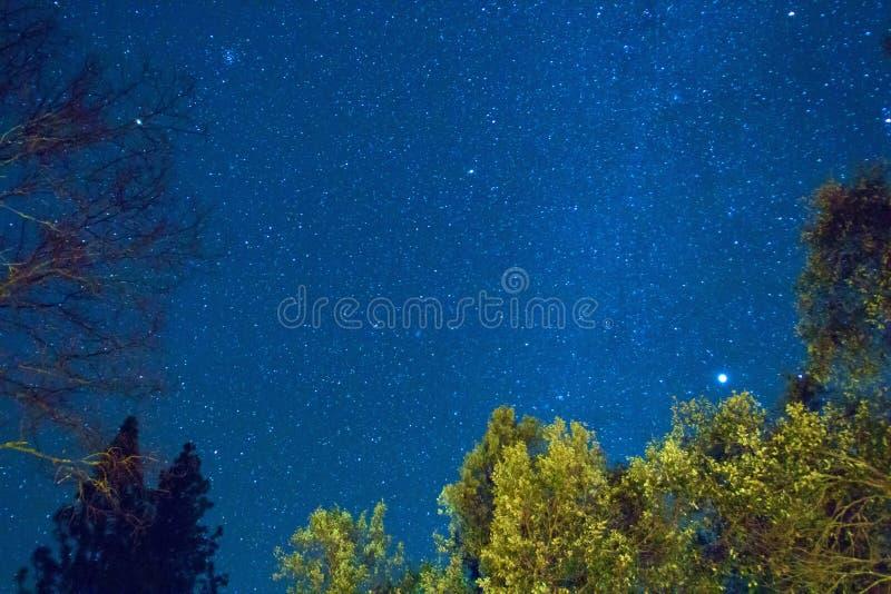 Stars in the night sky stock image