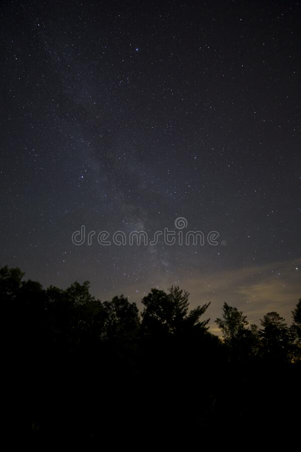 Stars Over Tree Tops Free Public Domain Cc0 Image