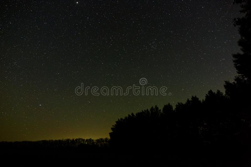 Stars in the sky at night. Outer space above the forest. Photographed with a long exposure.  stock photo