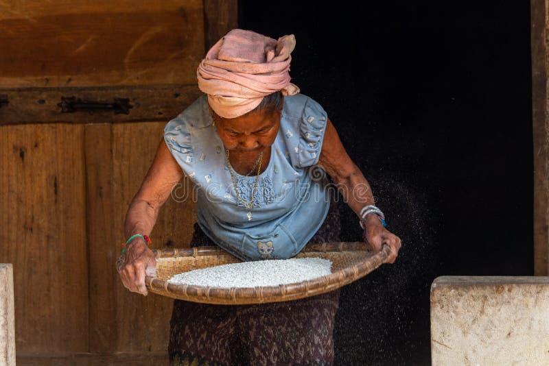 Starsza dama sieving zboża wiejski Laos zdjęcie stock